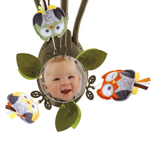 Fisher Price Owl Swing All About Fish