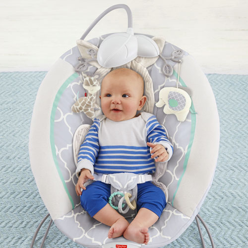 Bright Starts Ingenuity Automatic Baby Bouncer - The Whole ...