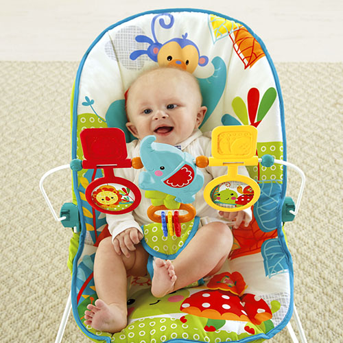 fisher price bouncer instructions