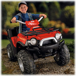 Power Wheels® Kawasaki® Brute Force