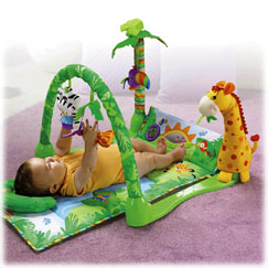Fisher Price Baby Play Mat And Floor Gym Mats